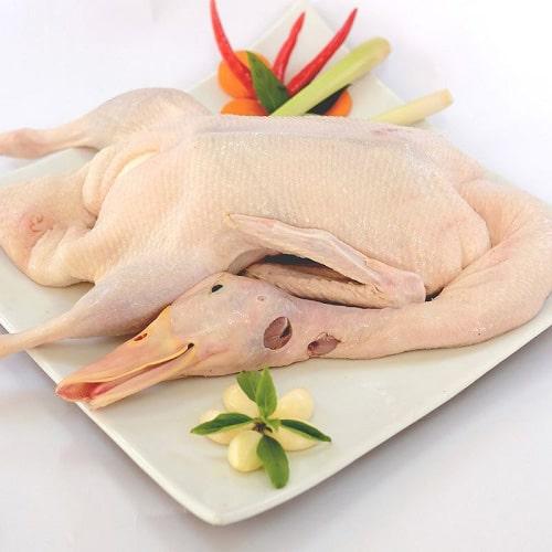 Top 1 những vị ngon bạn chưa biết thịt vịt - mirage.vn